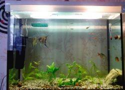 Как сделать крышку для аквариума