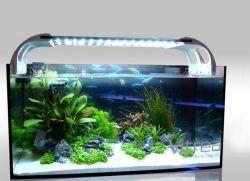 Свет для аквариума своими руками