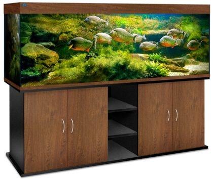 akvarium-biodizajn-atoll-1000-zolotoj-orekh
