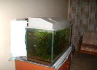 Внешний фильтр для аквариума своими руками26
