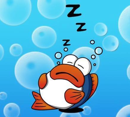 как рыбы спят