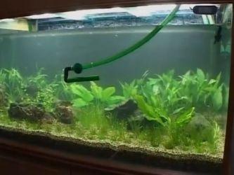 Дизайн аквариума своими руками15
