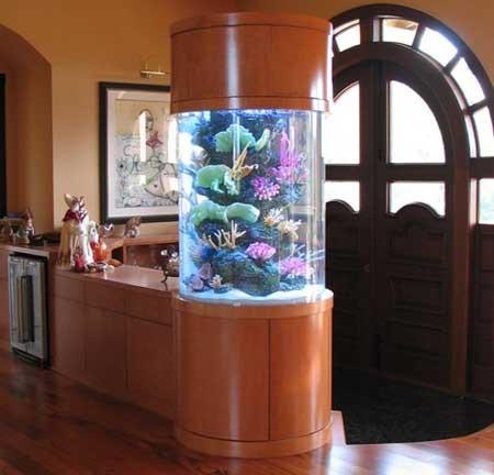 Как смягчить воду в аквариуме