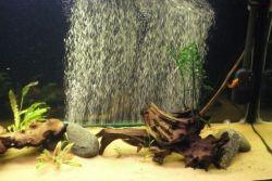 компрессор для аквариума 1