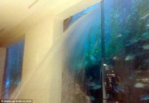Потёк аквариум