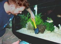 Как мыть аквариум1
