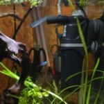 правильная чистка аквариума