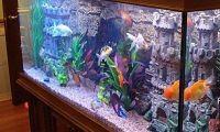 Камни для аквариума 1