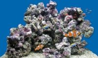 Камни для аквариума 5