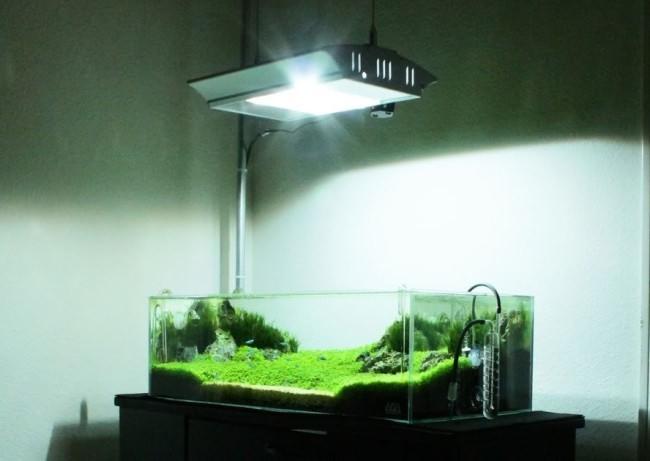 Металлогалогенный тип ламп.