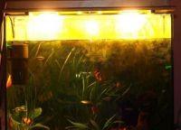 Освещение аквариум2