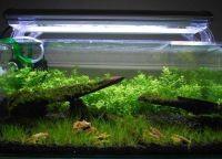 Освещение аквариум3