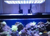 Освещение аквариум4