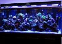 Освещение аквариум5
