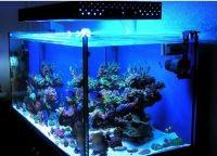 Освещение аквариум6