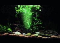 Освещение аквариум8