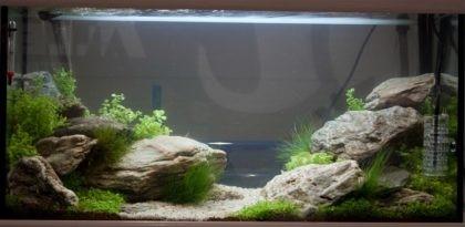 20101118-setup_aqu