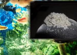 корм для аквариумных рыбок своими руками10