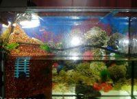 Крышка для аквариума1