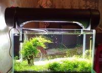 Ультрафиолетовая лампа для аквариума8