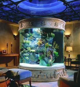 Как подготовить аквариумную воду