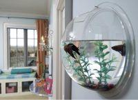 Настенный аквариум9