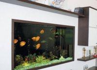 Настенный аквариум08