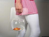 6. Необычные аквариумы
