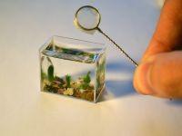 8. Необычные аквариумы