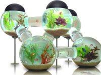 9. Необычные аквариумы