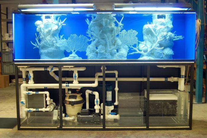 внешний фильтр для аквариума какой лучше