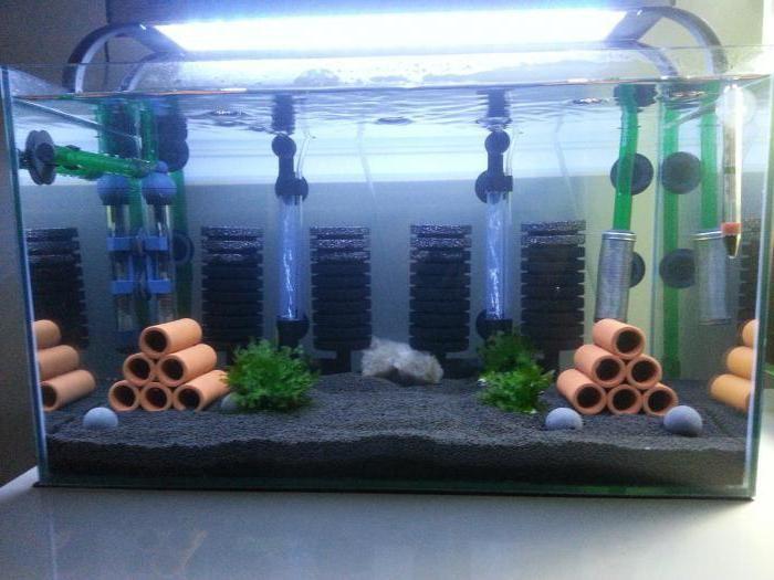 какой фильтр самый лучший для аквариума