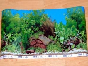 адний фон для аквариума