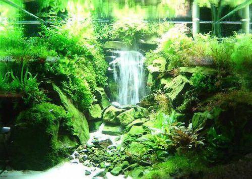 Как сделать водопад в аквариуме