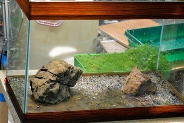 подготовка грунта для аквариума 4