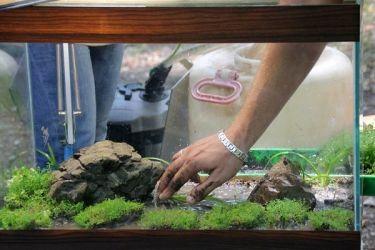 подготовка грунта для аквариума 5