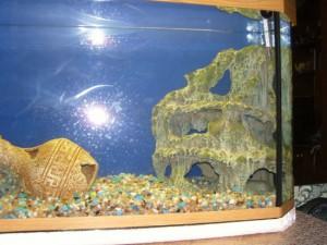 грот-в-аквариум-своими-руками
