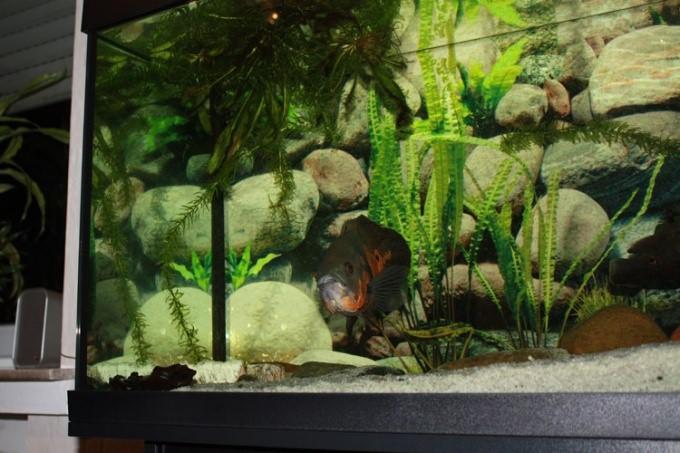 аквариумная стойка своими руками