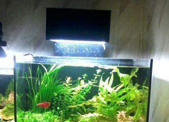 Лампа для аквариума своими руками 7