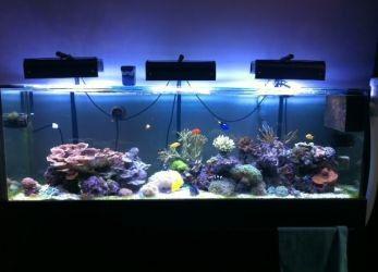 Светодиодный светильник для аквариума
