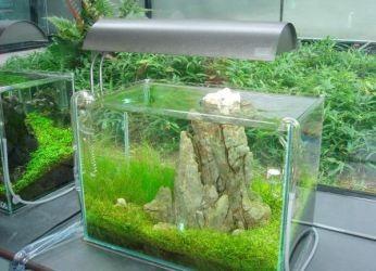 Подвесной светильник для аквариума