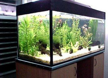 Люминесцентные светильники для аквариума
