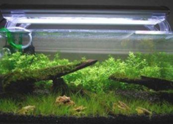 Самодельный светильник для аквариума