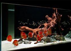 кварцевый песок для аквариума