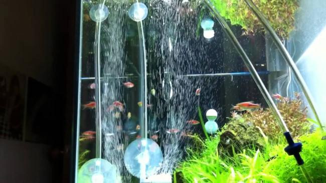 Система аэрации для аквариума.