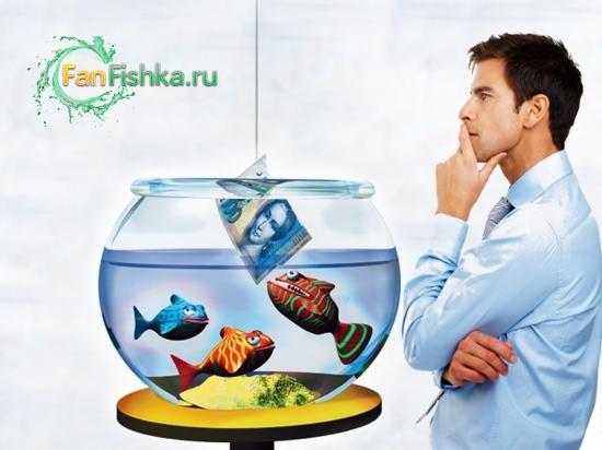 сколько стоит аквариум