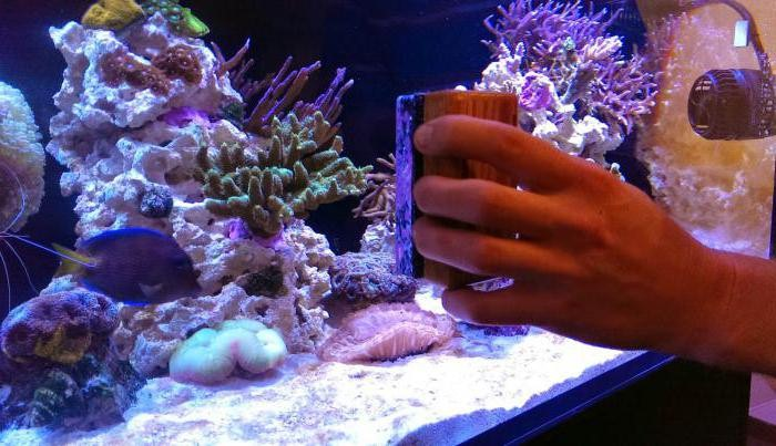 магнитные скребки для аквариума своими руками