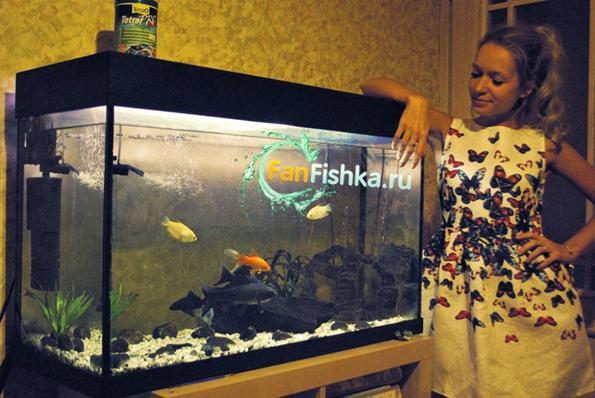 девушка и аквариум