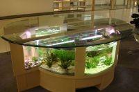 Стол аквариум 5