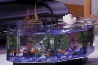 Стол аквариум 7